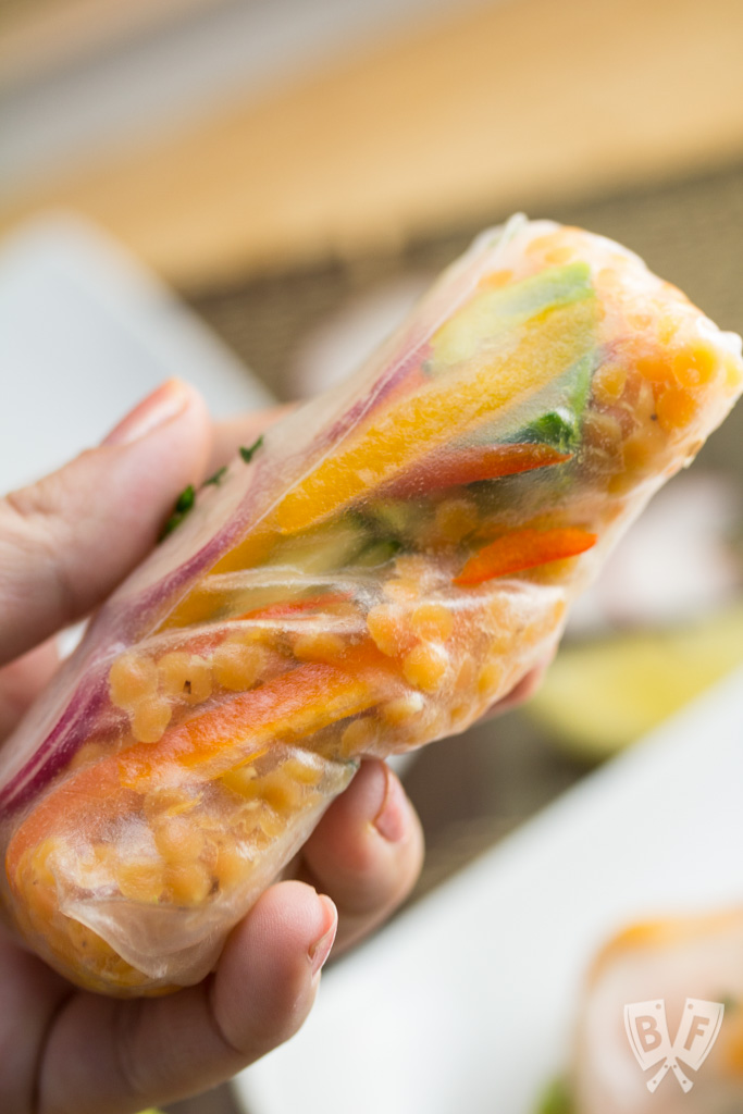 Shrimp + Red Lentil Summer Rolls with Hoisin-Bean Sauce: This installment of Big Flavors from a Mystery Basket features a vibrant, Asian-inspired dish that was a big hit at the dinner table!