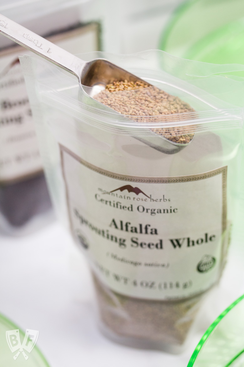A tablespoon of alfalfa sprouting seeds being measured from a bag.