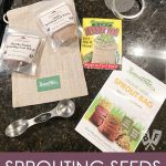 Overhead view of seed sprouting supplies.