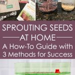 Assortment of seed sprouting supplies.