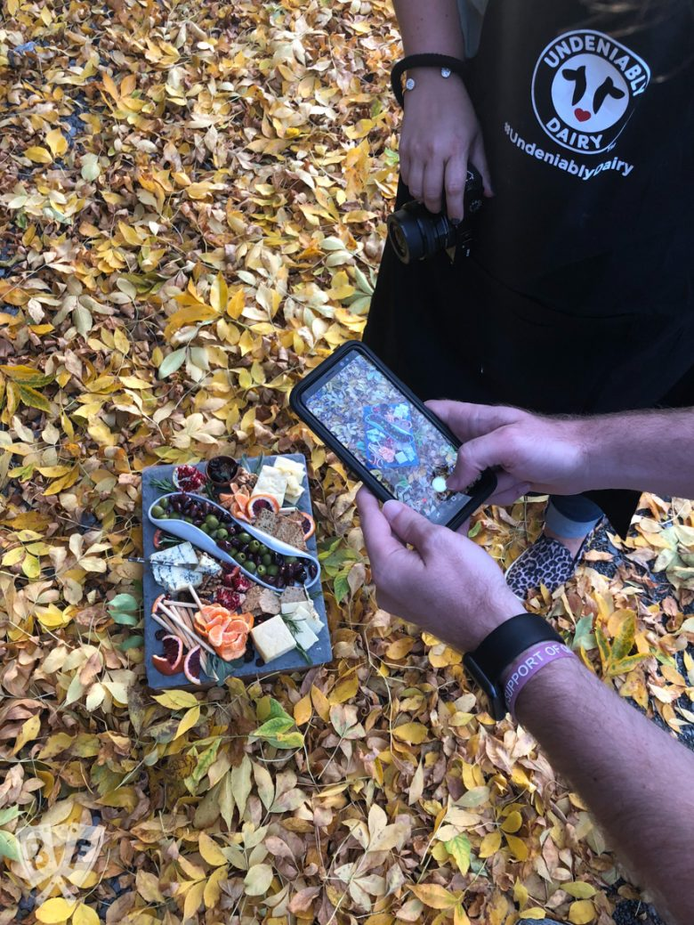Cheese board among autumn leaves with a person taking a photo of it.